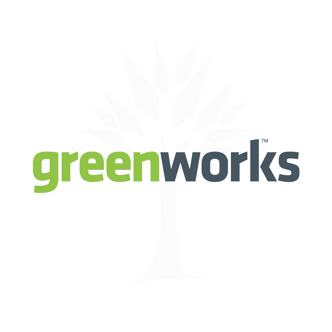"GreenWorks 20V 8"" Polesaw Bar Assy  29062"